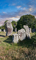 View of Carnac neolthic standing stones monaliths, a pre-Celtic site of standing stomes used from 4500 to 2000 BC,<br /> <br /> Carnac is famous as the site of more than 10,000 Neolithic standing stones, also known as menhirs. The stones were hewn from local rock and erected by the pre-Celtic people of Brittany. The Carnac stones were erected during the Neolithic period which lasted from around 4500 BC until 2000 BC. One interpretation of the site is that successive generations visited the site to erect a stone in honour of their ancestors.