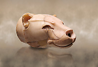 Fine Minoan translucent limestone lioness head shaped rhython from the  Knossos Palace Repositories 1600-1500 BC, Heraklion Archaeological  Museum.<br /> <br /> This exquitely worked lioness head rhython has a hole in the muzzle for pouring liquid offerings. The nose and eyes were originally inlaid