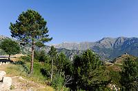 beim Pass Col de Vizzanova, Korsika, Frankreich