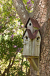 A tall 3 entrance bird house on the side of a tree. Lilacs in the background.
