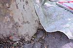 Festival Uzes Danse 2010..MON NOM..Une place pour Monument aux morts..Laurent Pichaud - X-SUD..Avec : Carole Perdereau, Cedric Torne, Julien Quartier, Laurent Pichaud, Sabine Macher, Thomas Bernardet, Yannick Guédon....Le 13/06/2010..creation in situ..Uzes..© Laurent Paillier / photosdedanse.com..All rights reserved