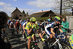The peloton including Filippo Pozzato Farnese Vini-Selle Italia start the Koppenberg climb during the 96th edition of The Tour of Flanders 2012, running 256.9km from Bruges to Oudenaarde, Belgium. 1st April 2012. <br /> (Photo by Steven Franzoni/NEWSFILE).