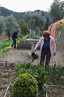 Europe/France/Provence-Alpes-Côte d'Azur/Alpes-Maritimes/Grasse:  Domaine de  La Royrie - Monique et Lionnel Brault, oléiculteurs  dans leur jardin des moines - Agriculture biologique //    Europe, France, Provence-Alpes-Côte d'Azur, Alpes-Maritimes, Grasse: The Domaine de la Royrie  Monique and Lionel Brault, olive growers