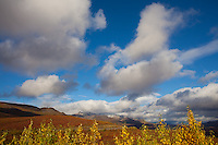 Autumn Cloudscape, Denali National Park
