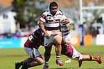 NELSON, NEW ZEALAND - OCTOBER 25: Mitre 10 Cup - Tasman Mako v Southland Saturday 25 October  2020 , Trafalgar Park Nelson New Zealand. (Photo by/ Shuttersport Limited)