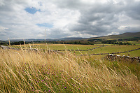 5-8-2021 Upland farming landscape in Cumbria  <br /> ©Tim Scrivener Photographer 07850 303986<br />      ....Covering Agriculture In The UK....