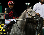 September 18, 2021: #6 Stellar Tap in the post parade G3 Iroquois S. at Churchill Downs in Louisville, Kentucky on September 18, 2021. Jessica Morgan/Eclipse Sportswire.