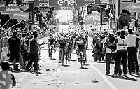 Fernando Gaviria (COL/Quick-Step Floors) wins his 4th stage in this 100th Giro d'Italia 2017<br /> <br /> Stage 13: Reggio Emilia › Tortona (167km)