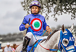 HALLANDALE BEACH, FL - Photo of Paco Lopez taken November 2014 at Gulfstream Park in Hallandale Beach, FL. (Photo by Bob Aaron/Eclipse Sportswire/Getty Images)