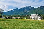 Deutschland, Bayern, Oberbayern, Berchtesgadener Land, Bayerisch Gmain: Fruehlingswiese | Germany, Bavaria, Upper Bavaria, Berchtesgadener Land, Bayerisch Gmain: spring meadow