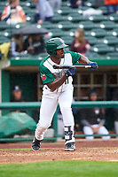 Fort Wayne TinCaps Dwanya Williams-Sutton (11) shows bunt during a Midwest League game against the Kane County Cougars at Parkview Field on May 1, 2019 in Fort Wayne, Indiana. Fort Wayne defeated Kane County 10-4. (Zachary Lucy/Four Seam Images)