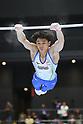 Artistic Gymnastics: 73rd All Japan Artistic Gymnastics Individual All-Around Championship
