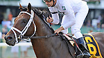 Rule (no. 6), ridden by Joe Bravo and trained by Todd Pletcher, wins the  grade 2 Monmouth Cup Stakes for three year olds and upward on July 07, 2012 at Monmouth Park in Oceanport, New Jersey.  (Bob Mayberger/Eclipse Sportswire)