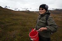 "Natasia Wahlberg explains how berries must be picked to avoid harming the plant. Wahlberg, a Yupik orginally from Bethel, was picking ""blackberries"" known more widely as crowberries, near the top of Hatcher Pass to make eskimo icecream. The road over the pass is closed to vehicle traffic for winter starting Sept. 14 this year."