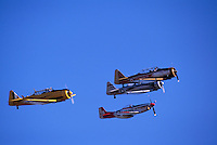 North American Aviation T-6 Texan (aka Harvard Mk IV), and North American Aviation P-51D Mustang flying in Formation in Heritage Flight - at Abbotsford International Airshow, BC, British Columbia, Canada