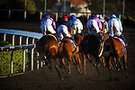 Horses race into the first turn on December 07, 2013 at Betfair Hollywood Park in Inglewood, California .(Alex Evers/ Eclipse Sportswire)