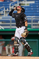 Batavia Muckdogs catcher Igor Baez (6) during a NY-Penn League game against the Auburn Doubledays on June 19, 2019 at Dwyer Stadium in Batavia, New York.  Batavia defeated Auburn 5-4 in eleven innings in the completion of a game originally started on June 15th that was postponed due to inclement weather.  (Mike Janes/Four Seam Images)