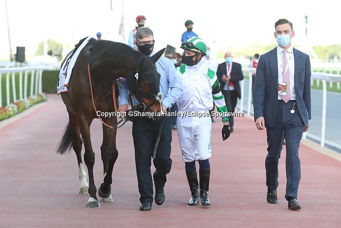 MARCH 27, 2021: MEKONG (GB) in the post parade for the Dubai Gold Cup on Dubai World Cup Day, Meydan Racecourse, Dubai, UAE. Shamela Hanley/Eclipse Sportswire/CSM