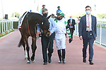 MARCH 27, 2021: MEKONG (GB) in the post parade for the Dubai Gold Cup on Dubai World Cup Day, Meydan Racecourse, Dubai, UAE. Shamela Hanley/Eclipse Sportswire/CSM