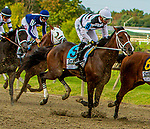 SEPT 25, 2021: Leader of the Band the Gr.1 Cotillion Stakes, for 3-year old fillies, going 1 1/16mile, at Parx Racing, Bensalem, PA. Sue Kawczynski/Eclipse Sportswire/CSM