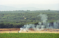 View over the vineyard. The farther vineyard where the vines have been pulled up for replanting. Two men are working on burning the pulled up vines making fires with smoke. In front vineyard with vines, in the distance a view over the mountains  Chateau Mont-Redon, Chateauneuf-du-Pape Châteauneuf, Vaucluse, Provence, France, Europe