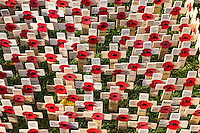 2016 11 10 Poppies at Cardiff Castle, Wales, UK