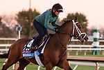 Likeable, trained by trainer Todd A. Pletcher, exercises in preparation for the Breeders' Cup Juvenile at Keeneland Racetrack in Lexington, Kentucky on November 4, 2020.