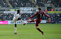 Saturday 2nd March 2013<br /> Pictured: (L-R) Nathan Dyer, Davide Santon.<br /> Re: Barclays Premier Leaguel, Swansea  v Newcastle at the Liberty Stadium in Swansea.