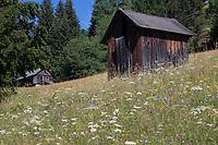 Bergwiese, Blumenwiese, Alm, Almwiese, mit kleinen Schuppen, Holzschuppen, Alpen, alpine pasture, mountain pastures, mountain pasture, Kärnten, Österreich, Austria, alp, alps
