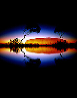 Ayers Rock reflection and Trees