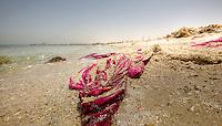 Al Jazayer Beach, Bahrain