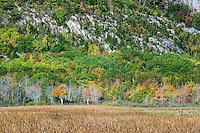 Mountain scenic, Acadia National Park, Maine, USA