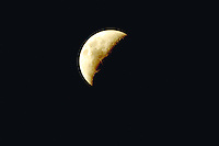 Third quarter moon. Houston Texas.
