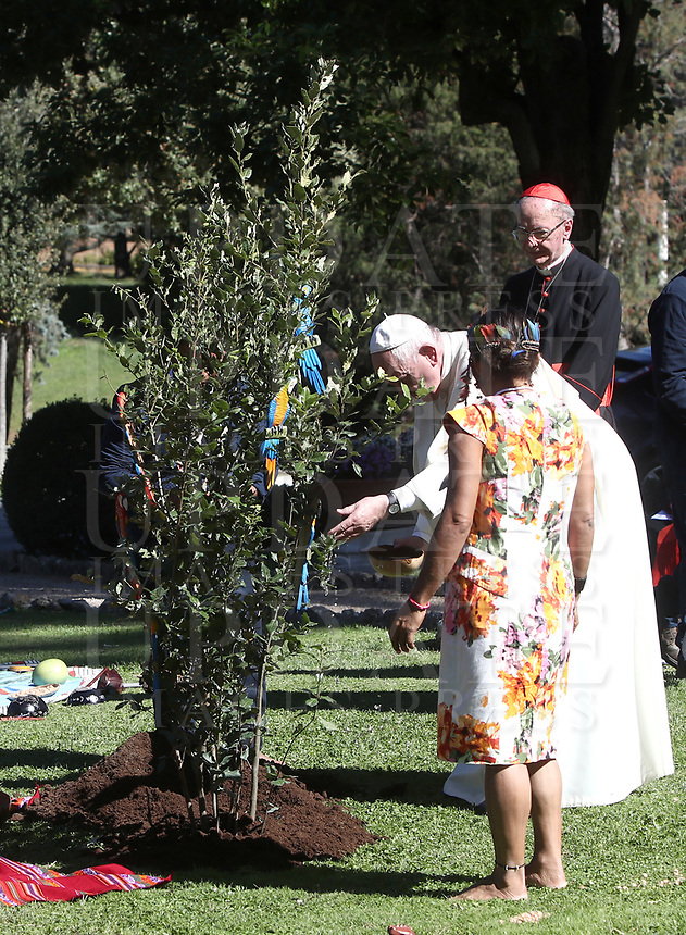 iin the Vatican Garden at the Vatican, on October 4, 2019.<br /> UPDATE IMAGES PRESS/Isabella Bonotto<br /> <br /> STRICTLY ONLY FOR EDITORIAL USE