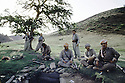 Irak 1985.Dans les zones libérées, région de Lolan, peshmergas se reposant sous un arbre.Iraq 1985.In liberated areas, Lolan district, peshmergas resting under a tree