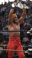Hulk Hogan 1993<br /> Photo By John Barrett/PHOTOlink