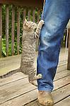 Norm climbing Daniel's leg