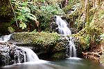 Onomea Falls, Hawaii