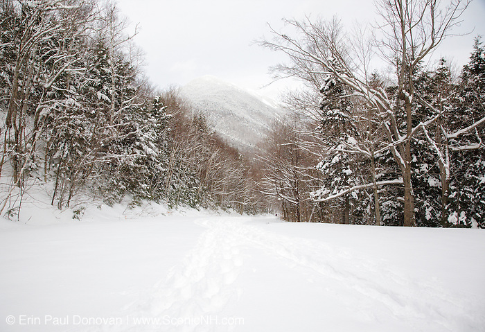 Willey House Station House Road in Harts Location, New Hampshire USA during the winter months. This road is located in Crawford Notch State Park.