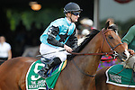 June 8, 2012. The Right One, Julien Leparoux up, heads to the track for the Gr III Jaipur Stakes at Belmont Park in Elmont, New York. ©Joan Fairman Kanes/Eclipsesportswire