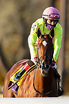 November 6, 2020: Aunt Pearl, ridden by Florent Geroux, wins the Juvenile Fillies Turf on Breeders' Cup Championship Friday at Keeneland on November 6, 2020: in Lexington, Kentucky. Wendy Wooley/Breeders' Cup/Eclipse Sportswire/CSM