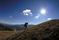 Man hiking and backpacking in the scenic backcountry of Hoosier Pass in the Rocky Mountains of Colorado. Jay Morris (MR 614). Colorado.