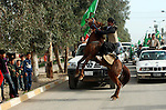 KELAR, IRAQ: A horse rears during a P.U.K. election campaign parade in the Kurdish city of Kelar...A parade arranged by P.U.K, one of the political parties in Kurdistan Alliance List takes place in the Kurdish city of Kelar.  The Iraqi Parliamentary Elections due to be held March 7th, 2010...Photo by Dashti Anwar/ Metrogrphy