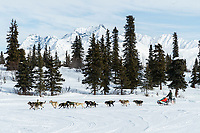Jeff King runs on the trail in the afternoon on the trail near the Rainy Pass checkpoint at Puntilla Lake in the Alaska Range during the 2019 Iditarod on Monday, March 4th 2019.<br /> <br /> Photo by Jeff Schultz/  (C) 2019  ALL RIGHTS RESERVED