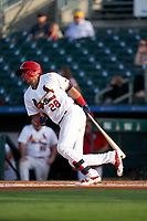 Palm Beach Cardinals Dennis Ortega (28) bats during a Florida State League game against the Clearwater Threshers on August 9, 2019 at Roger Dean Chevrolet Stadium in Jupiter, Florida.  Palm Beach defeated Clearwater 3-0 in the second game of a doubleheader.  (Mike Janes/Four Seam Images)