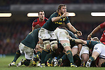 Springbok number 8 Duane Vermeulen gets the ball away from the back of the scrum. <br /> <br /> 2013 Dove Men Series<br /> Wales v South Africa<br /> Millennium Stadium<br /> 09.11.13<br /> ©Steve Pope-Sportingwales