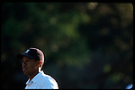 Tiger Woods watches his shot from the fairway at the Genuity Open at Doral in Miami, Fl.