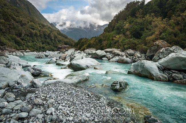 Butler River at Top Butler Hut near Whataroa, South Westland, West Coast, New Zealand, NZ