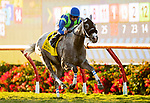 SEPTEMBER 04 2021:  None Above the Law with Joe Bravo wins  the Del Mar Derby at Del Mar Fairgrounds in Del Mar, California on September 04, 2021. Evers/Eclipse Sportswire/CSM
