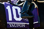 November 7, 2020 :Yaupon prepares for the Sprint on Breeders' Cup Championship Saturday at Keeneland Race Course in Lexington, Kentucky on November 7, 2020. Carolyn Simancik/Breeders' Cup/Eclipse Sportswire/CSM